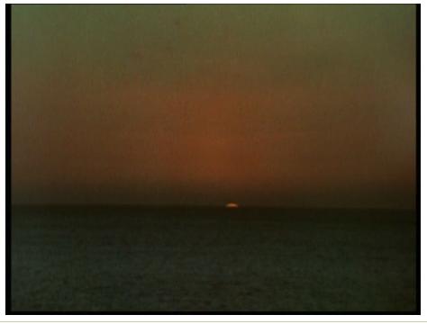 Screen Shot 2020-01-23 at 1.15.19 PM